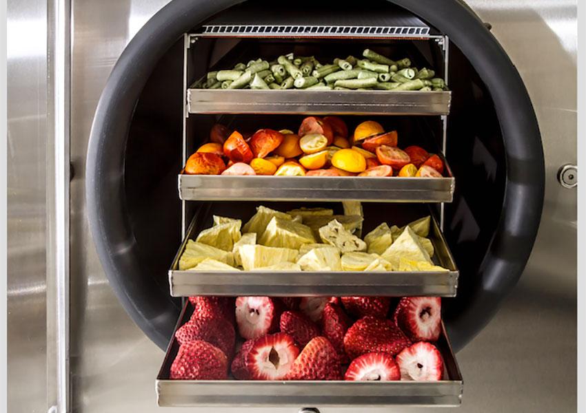 Cách làm hoa quả sấy khô bằng máy sấy thăng hoa