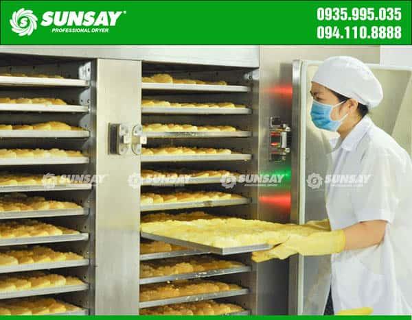 Máy sấy lạnh SUNSAY chuyên sấy dứa xuất khẩu